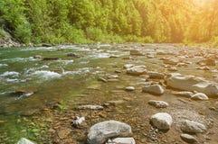 Ландшафт горы, лес и быстрое река горы Красивый пейзаж с рекой горы Стоковые Изображения