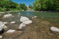 Ландшафт горы, лес и быстрое река горы Красивый пейзаж с рекой горы Стоковое Изображение RF