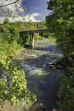 Ландшафт горы, лес и быстрое река горы Красивый пейзаж с рекой горы Стоковые Изображения RF
