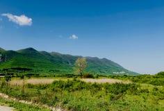 Ландшафт горы на ярком времени солнечного дня весной сезонном стоковое фото rf