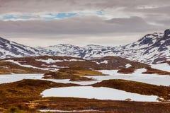 Ландшафт горы Норвегии сценарный Стоковые Фото