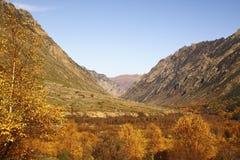 Ландшафт горы осени Стоковое Изображение