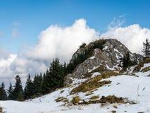 Ландшафт горы, прикарпатские горы стоковое фото