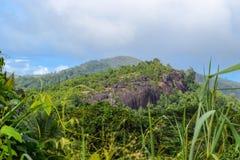 Ландшафт горы с джунглями в Сейшельских островах стоковые изображения