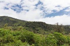 Ландшафт горы Aderdare Голубое небо и облака над яркими ыми-зелен джунглями Кения стоковая фотография rf