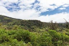 Ландшафт горы Aderdare Голубое небо над зелеными джунглями Кения стоковое фото