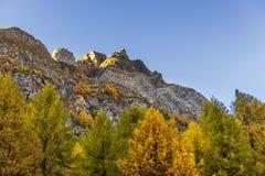 Ландшафт горы devero Alpe осенний стоковая фотография rf