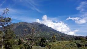 Ландшафт горы merapi стоковые изображения rf