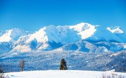 Ландшафт горы Snowy   стоковые фотографии rf