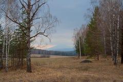 Ландшафт горы, горы Ural Стоковое Изображение RF