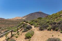 Ландшафт гор парка Teide на лете Идя следы вдоль горных склонов с эндемичной растительностью, вулканом Teide на стоковая фотография