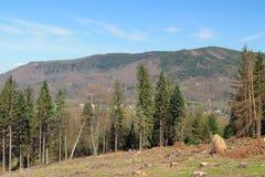 Ландшафт гор Beskydy Стоковое Изображение RF