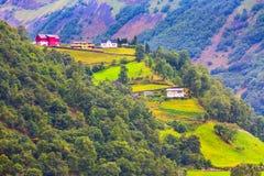 Ландшафт деревни и горы Норвегии Стоковое фото RF