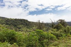 Ландшафт держателя Aderdare Голубое небо над яркими ыми-зелен джунглями Кения стоковая фотография