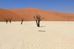 Ландшафт долины Sossusvlei мертвый в пустыне Nanib около Sesrie Стоковая Фотография