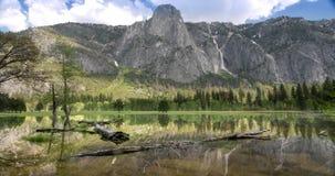 Ландшафт долины Yosemite сток-видео
