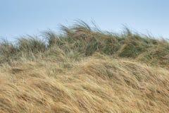 Ландшафт дюны на острове Helgoland стоковые изображения