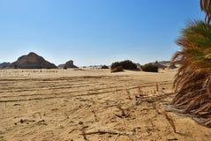 Ландшафт западной пустыни Сахары, Египта стоковое фото