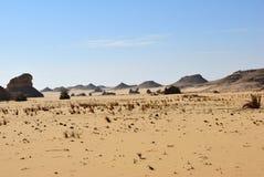 Ландшафт западной пустыни Сахары, Египта стоковые изображения rf