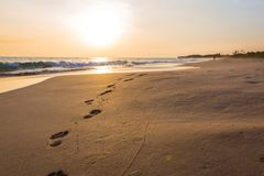 Ландшафт захода солнца на пляже стоковая фотография