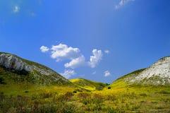 ландшафт зеленых холмов Стоковые Фотографии RF