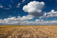 ландшафт земледелия Стоковое Фото
