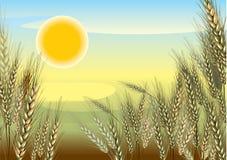 ландшафт земледелия иллюстрация вектора