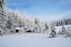 ландшафт зимний Стоковая Фотография RF