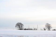 ландшафт зимний Стоковое фото RF
