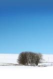 ландшафт зимний Стоковое Изображение