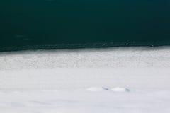 ландшафт зимний Стоковое Фото