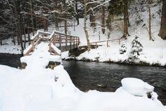 Ландшафт зимы богемской Швейцарии стоковые изображения rf