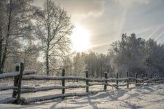 Ландшафт зимы во время сильного снегопада стоковое изображение rf