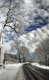 Ландшафт зимы, время полдня Стоковое Фото