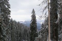 Ландшафт зимы высокий в горах Стоковое фото RF