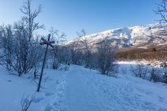 Ландшафт зимы в Лапландии, национальном парке Abisko, Швеции стоковые фотографии rf