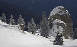 Ландшафт зимы в прикарпатских горах горы Румыния ciucas стоковое фото rf