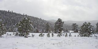 Ландшафт зимы в скалистых горах Стоковое Изображение