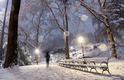 Ландшафт зимы в центральном парке город New York стоковые фото