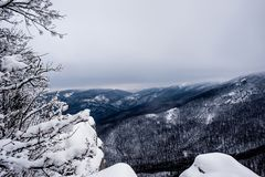 Ландшафт зимы горы Солнце сияющее Горы можно увидеть до конца деревьям стоковые изображения