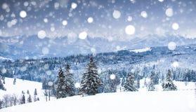 Ландшафт зимы горы  стоковая фотография rf