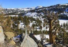Ландшафт зимы горы Стоковые Изображения RF