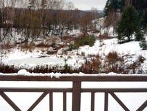 Ландшафт зимы и поручни моста стоковое изображение rf