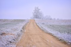 Ландшафт зимы Литвы сельское место Стоковое Изображение RF