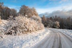 Ландшафт зимы на западном побережье в Швеции Стоковая Фотография