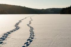 Ландшафт зимы на западном побережье в Швеции Стоковое Фото