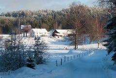 Ландшафт зимы на западном побережье в Швеции Стоковые Изображения