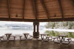 Ландшафт зимы озера Генри Hagg стоковое изображение rf