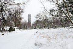 Ландшафт зимы покрытый с башней бдительности стоковое изображение rf