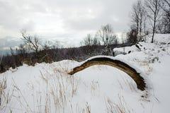 Ландшафт зимы покрытый с снегом стоковая фотография rf